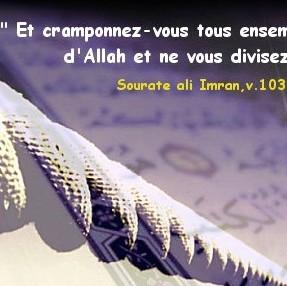 POUR VOUS MES FRERES  - Page 2 Cramonnez-vous-e1354056054604